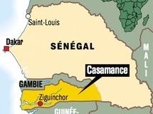Sénégal- Iran : La preuve par Goudomp