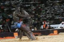 LUTTE - LENDEMAIN DE COMBAT AU MARCHE SANDAGA : Les supporters de Fass contestent le titre de 3e Tigre de Gris Bordeaux