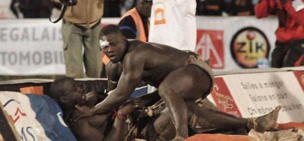 Réinsertion sociale: L'Etat invité à réfléchir sur la formation des lutteurs dans les écuries