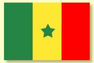 Notresenegal.com : Un espace « libre d'expression et de dialogue » créé par des Sénégalais en France