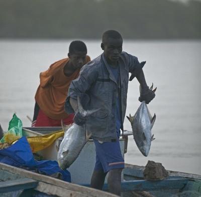 [Reportage audio] Cheikh Salla Ndiaye, président du Collectif national des diplômés de la pêche : « le secteur de la Pêche traverse la situation la plus dramatique de son existence »