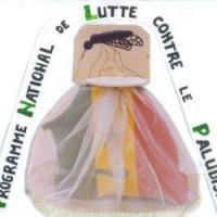 LUTTE CONTRE LE PALUDISME : Le Sénégal classé premier