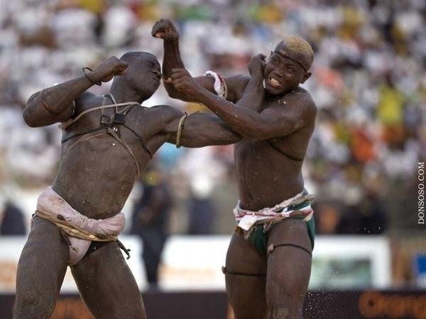 La lutte avec frappe est en train de tuer la boxe au Sénégal (DTN)