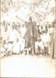 BIGNONA - BAKOLONG BADJI MONTE AU CIEL : L'histoire d'une ascension mal connue
