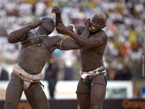 Malick Niang Met Adama Diouf K.O En 5 Secondes. Une Droite Terrible ! (Vidéo)
