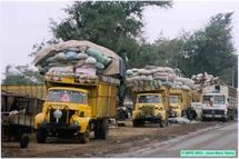 Vol et agression aux Hlm Grand-Yoff : Des routiers guinéens déclinent leurs vraies identités