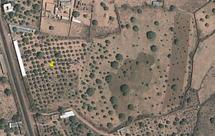 Chefs religieux et hautes personnalités mettent la main sur des centaines d'ha de terres dans la communauté rurale de Keur Moussa