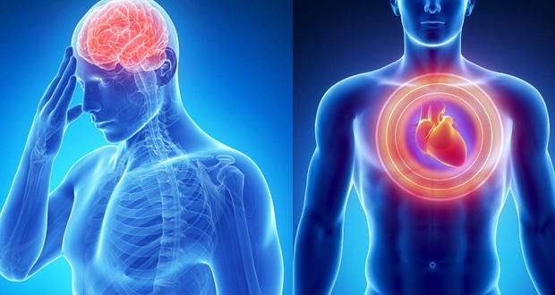 Infarctus, AVC : les symptômes qui doivent vous alerter