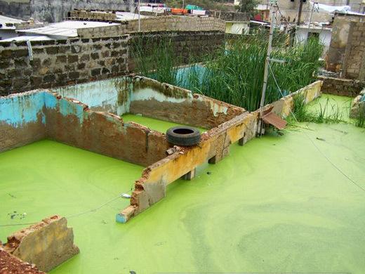 Dakar et banlieue : Inondations, une saison en enfer