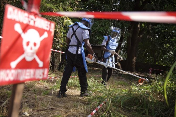 Arrêtées en 2017 faute de financement : les opérations de déminage en Casamance vont bientôt reprendre… 70. 000 m² concernés