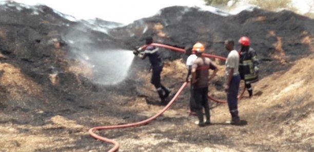 Incendie à la Sonacos de Diourbel : les pertes évaluées à 700 000 francs CFA, selon Pape Dieng