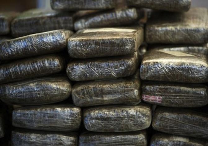Foundiougne : La douane saisit 229 kg de chanvre indien