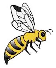 Vélingara : un cadavre abandonné en plein enterrement à cause des abeilles