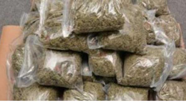 Saisine de drogue à Foundiougne: La valeur s'estime à 13 740 000 F Cfa