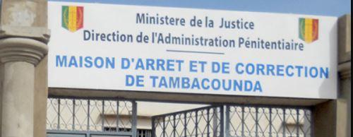 Tambacounda : Grâcié le 4 avril, il retourne en prison pour vol
