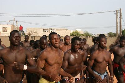 Carrefour des Champions (CACH) : Aziz Ndiaye veut 32, 64 lutteurs pour 10 millions