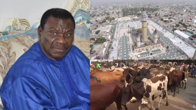 Au foirail de Dahra, les éleveurs de bœufs pleurent Cheikh Béthio : « Il nous achetait jusqu'à 500 têtes »