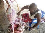 [Photos] Ndoye Bane et son mouton de Tabaski
