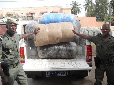 Trafic de stupéfiants: Ziguinchor carrefour du « Yamba »