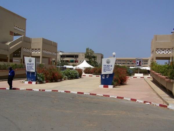 Sénégal : Les études dans la jungle du privé