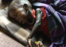 Lutte contre la malnutrition: 80 milles enfants risquent de mourir d'ici à 10 ans, si rien n'est fait