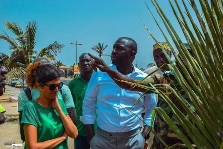 PHOTOS - Programme de remplacement des palmiers de la Corniche avec le ministre Abdou K. FOFANA et l'association Ecolibri