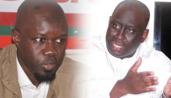 Ousmane Sonko : « Aliou Sall n'a pas déclaré la somme reçue aux impôts »
