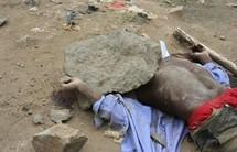 De Balla Gaye à Ndiaga Diouf : La longue liste des morts sous l'Alternance