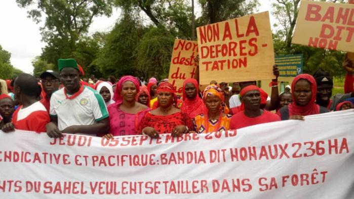 Bandia:Les populations dans la rue pour dire non aux 236 hectares de Layousse
