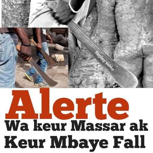 Alerte aux usagers de Keur Mbaye Fall, Petit Mbao : Des agresseurs opèrent sous le pont du croisement Keur Massar