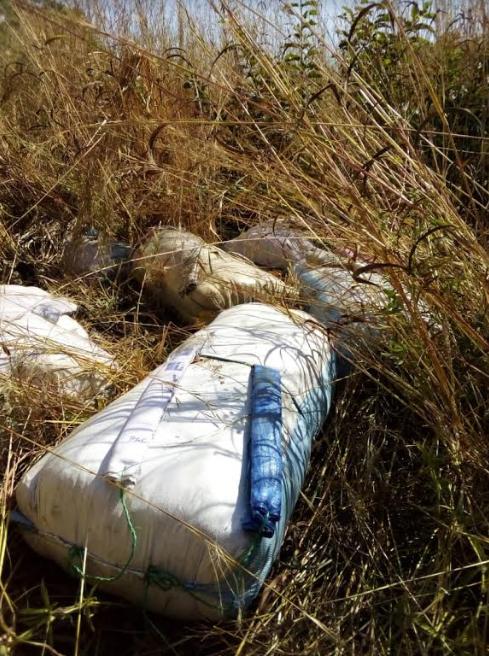 Trafic de chanvre indien: plus de 300 kg saisis à Missirah et Joal, 3 individus arrêtés