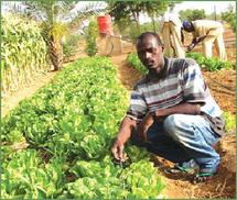 Forum sur les technologies agricoles et la sécurité alimentaire, samedi