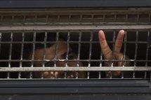 ''Journée du prisonnier palestinien'' : appel pour une application du droit international