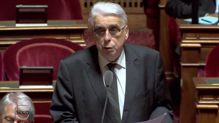 Mort de G. Dupont et C. Verlon: Un sénateur interpelle la ministre des Armées