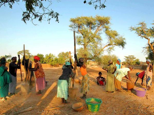 Hygiène et assainissement en milieu rural : 15 villages ciblés pour la phase test