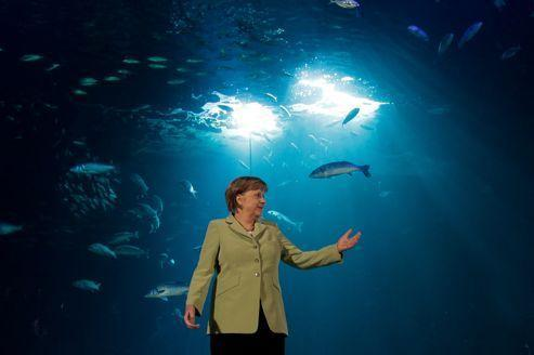 Merkel veut sauver sa révolution énergétique