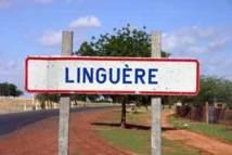 Linguère: Mélakh, un véritable sanctuaire de la religion musulmane vient de célébrer son  Magal annuel.