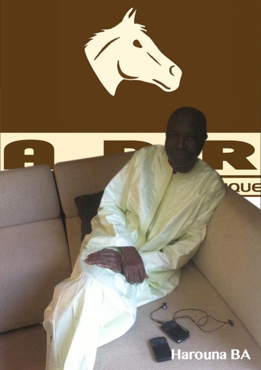 Harouna Dia  : Un intello chez les milliardaires