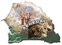 LE SENEGAL, UN PAYS PAUVRE ?