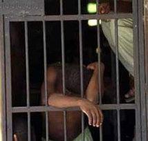 Trois Maliens condamnés à dix ans de travaux forcés pour trafic de chanvre indien