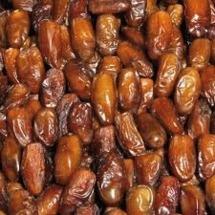Cerge et le ramadan :Un Koor de rêve