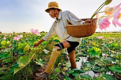Les trente ans de Handicap International au Cambodge