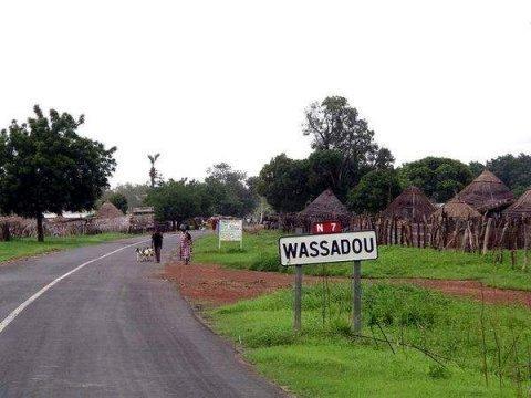 Tambacounda : Les habitants de Wassadou envahissent une partie des 3000 hectares de M.Khayat