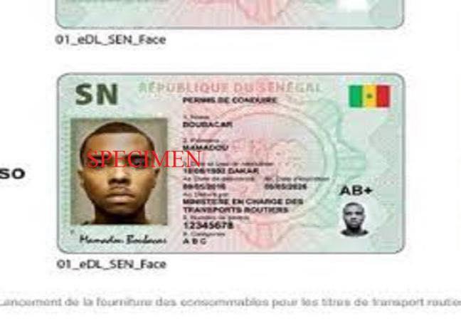 Diplomatie: Le permis de conduire sénégalais n'est plus échangeable en France