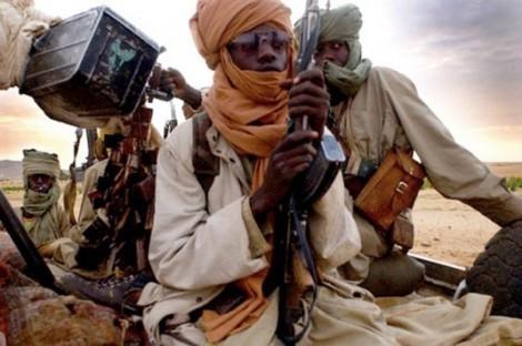 Qui veut aller libérer le Nord-Mali?