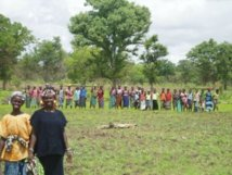 Le Pafa a fait reculer la faim selon des producteurs du Saloum