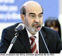 L'éradication de la faim passera par la hausse de la production vivrière, selon le DG de la FAO
