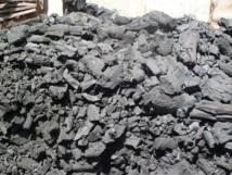 Scandale : Le proche d'un ministre et un libanais au cœur d'un vaste trafic international de charbon de bois