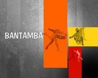 """Bantamba"" du mardi 20 Novembre 2012 invité ""Ndeye Ndiaye Tyson"""