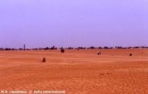 Spéculation foncière à Ndindory dans le Kanel Un projet de lotissement au cœur d'une tension vive